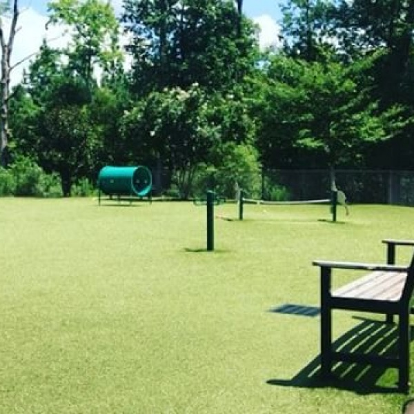 Check out our beautiful community! Check out our amazing doggie park!!